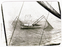 SF shrimp boat_50ba75fb96.jpg