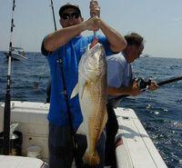 redfishcatch_965f7eb624.jpg