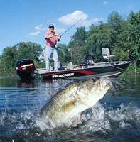 bassfishing_pic_340b5db462.jpg